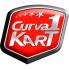 curva 1.png